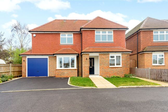 Thumbnail Detached house for sale in Kynance Close, Milford, Godalming, Surrey
