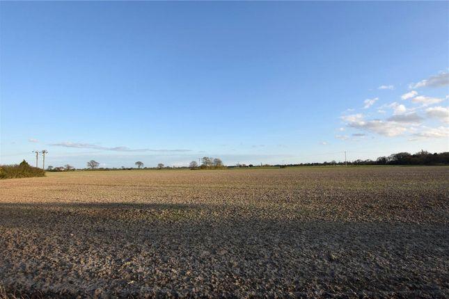 Field View of Harwich Road, Little Clacton, Clacton-On-Sea CO16