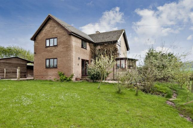 4 bedroom equestrian property to rent in Whittington, Sollers Hope, Hereford, Herefordshire