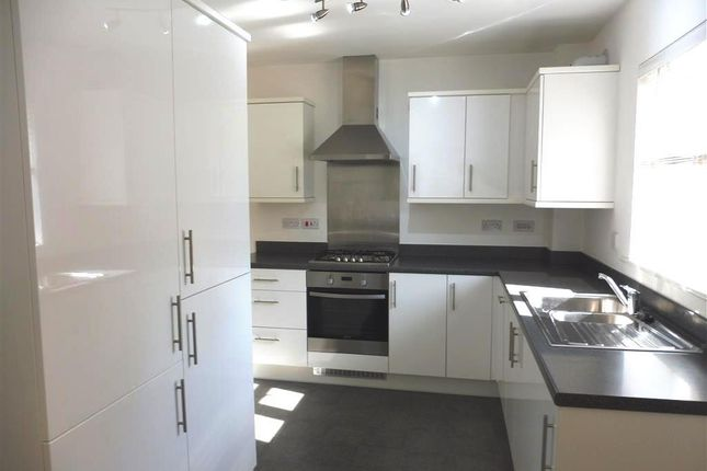 Thumbnail Detached house to rent in Cooper Road, Peterborough