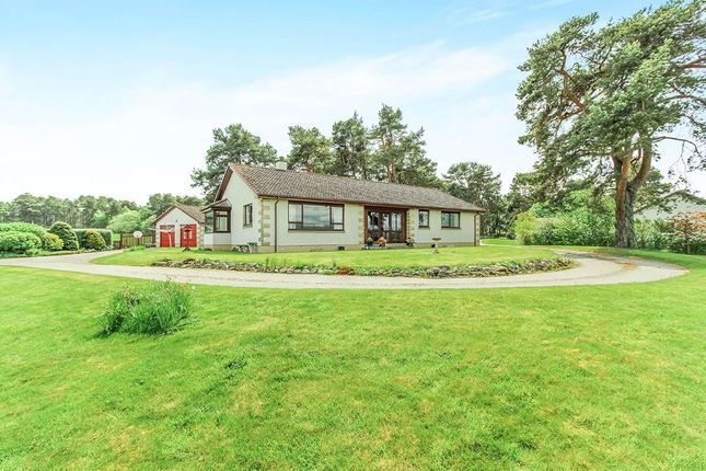 Thumbnail Bungalow for sale in Easter Kinkell, Conon Bridge, Dingwall