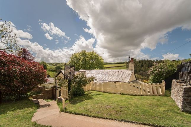 Thumbnail Cottage for sale in Exford, Minehead, Somerset