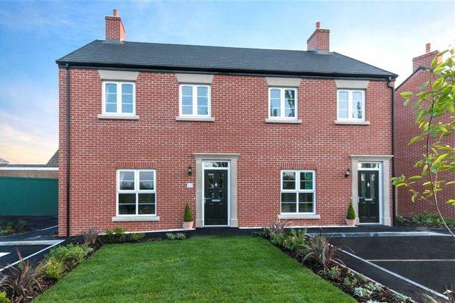 Thumbnail Semi-detached house for sale in Deer Park Lane, Butterley Park, Ripley