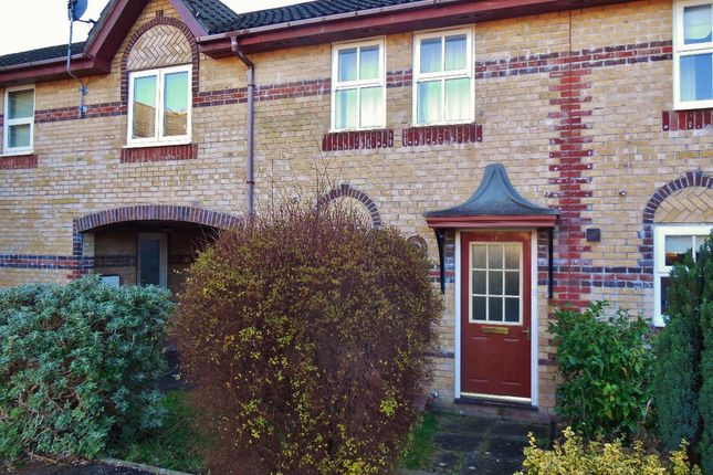 Thumbnail Terraced house to rent in Blaise Place, Grangetown, Cardiff