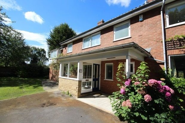 Thumbnail Detached house to rent in St. Helens Road, York