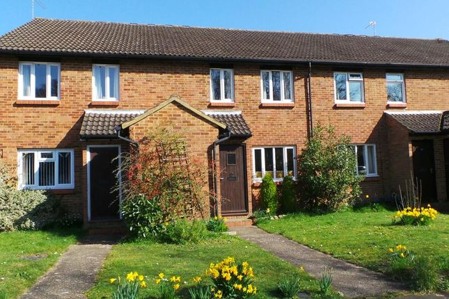 Thumbnail Maisonette to rent in Selby Walk, Horsell, Woking