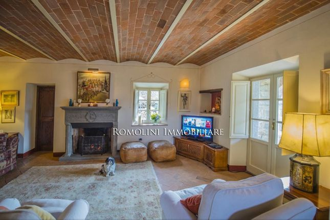 Bed And Breakfast For Sale Tuscany, Olive Grove Vineyard