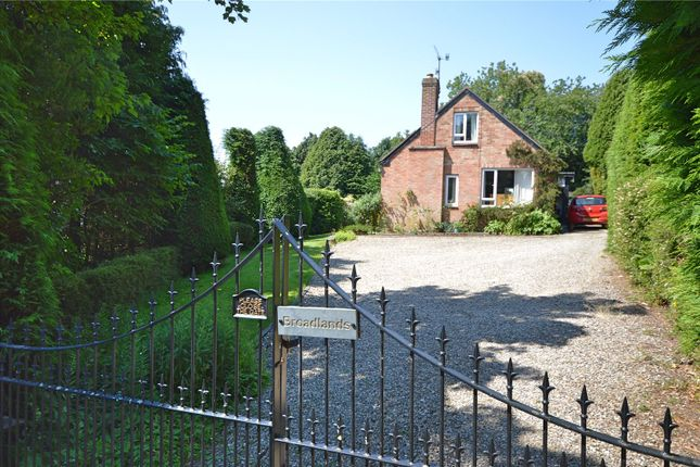Thumbnail Bungalow for sale in Milford Common, Milford Road, Newtown, Powys