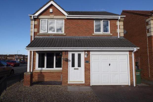 Thumbnail Detached house to rent in Ingleby Barwick, Stockton-On-Tees