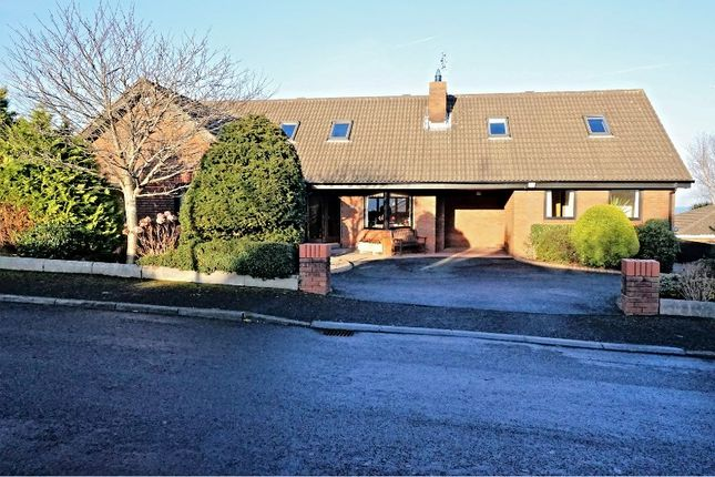 Thumbnail Detached house for sale in Bryansglen Avenue, Bangor