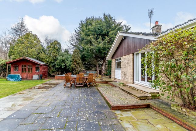Garden of Moated Farm Drive, Addlestone KT15