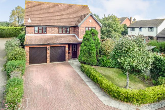 Thumbnail Detached house for sale in Dragon Close, Burnham-On-Crouch