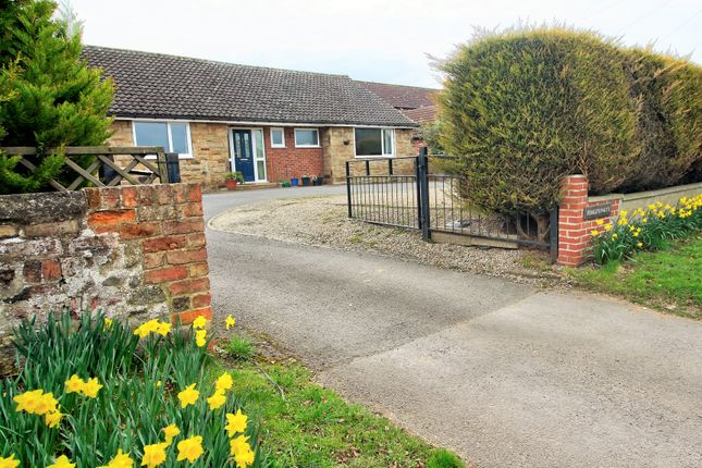 Thumbnail Bungalow for sale in Kirby Hill, Boroughbridge, York
