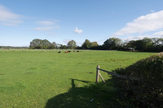 Thumbnail Land for sale in Land (1.85 Acres), Annan Road, Dumfries