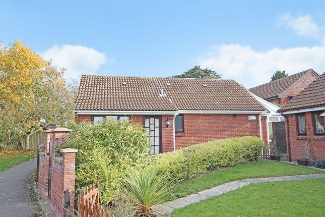 Thumbnail Detached bungalow to rent in Danvers Way, Westbury, Wiltshire
