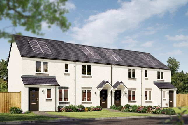 """2 bed terraced house for sale in """"The Portree"""" at Cupar Road, Guardbridge, St. Andrews KY16"""