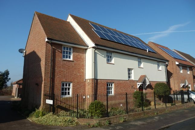 5 bed link-detached house to rent in High Street, Great Oakley