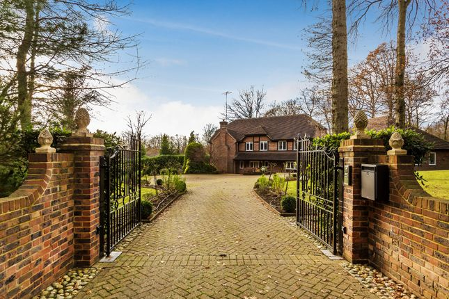 Thumbnail Detached house for sale in Wilderness Rise, Dormans Park, East Grinstead