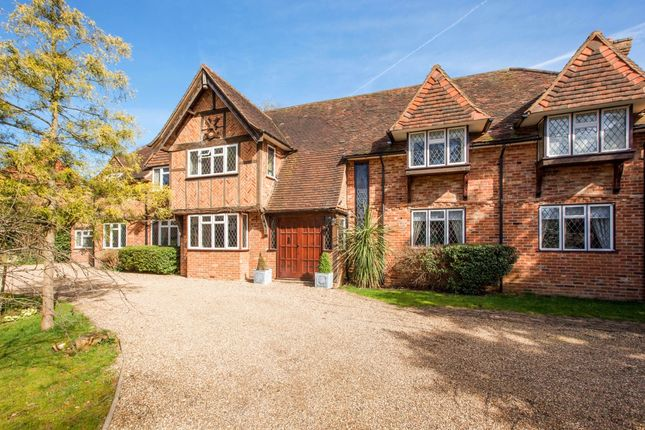 Thumbnail Detached house to rent in Lime Walk, Maidenhead