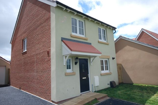 Thumbnail Detached house to rent in Shearwater Way, Seaton