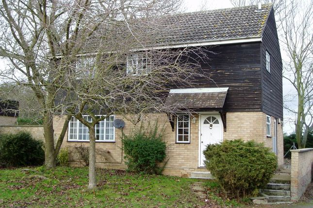 Thumbnail Detached house to rent in Eliot Close, Thetford