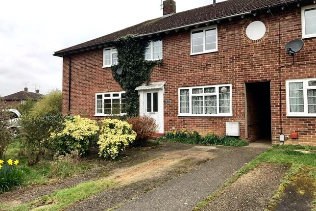 Thumbnail Property to rent in Golden Dell, Welwyn Garden City