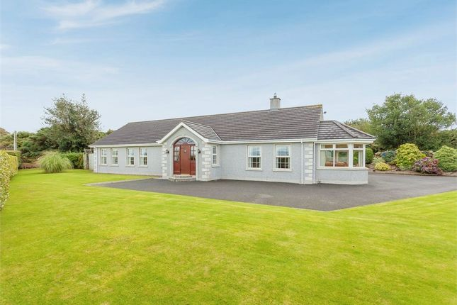 Thumbnail Detached bungalow for sale in Scaddy Road, Downpatrick, County Down