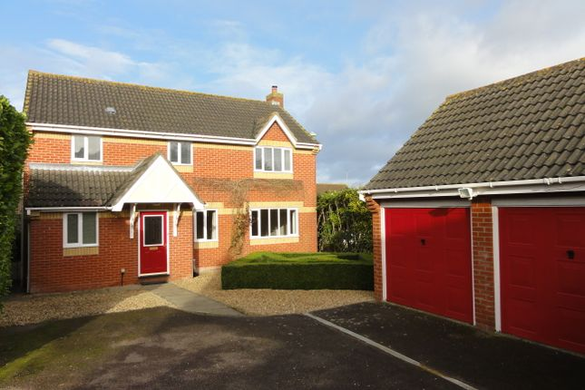 Thumbnail Detached house to rent in Arundel Close, Bury St. Edmunds