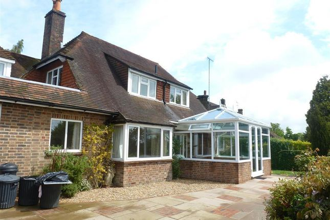Thumbnail Property to rent in Fox Hill Close, Haywards Heath