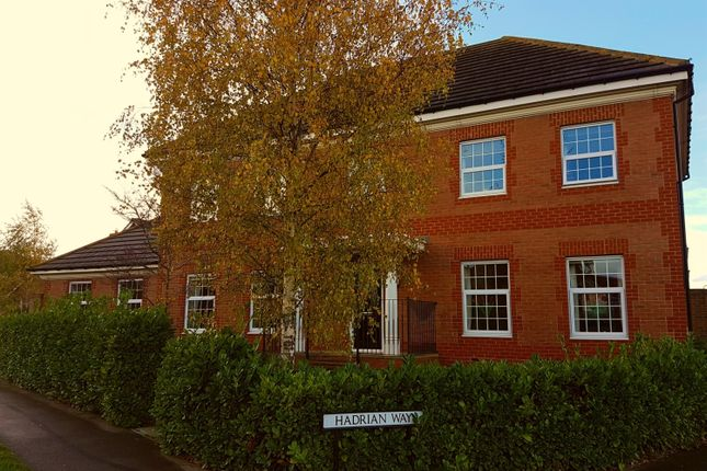 Thumbnail Detached house for sale in The Rings, Ingleby Barwick