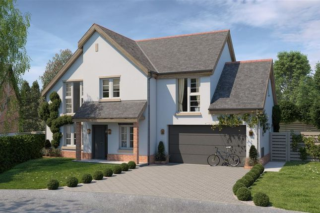 Thumbnail Detached house for sale in Hordon Field, Town Lane, Woodbury