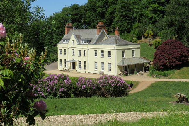 Thumbnail Detached house for sale in Roadwater, Watchet, Somerset