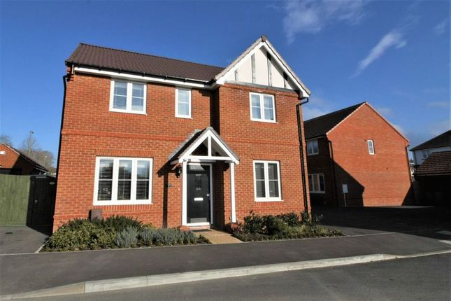 Thumbnail Detached house for sale in Randal, Bishopsfield Road, Fareham