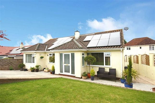 Thumbnail Detached bungalow for sale in St Mary's Close, St Mary's, Brixham