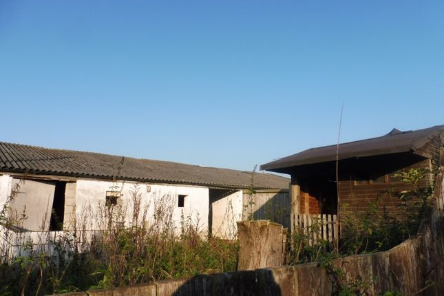 Thumbnail Bungalow for sale in Former Piggeries At, Thurning Road, Briston, Norfolk
