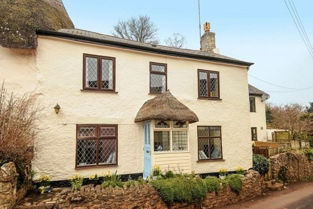 Homes For Sale In Maidencombe Buy Property In