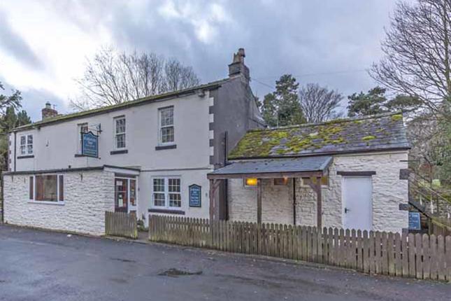 Thumbnail Pub/bar for sale in West Northumberland CA8, Slaggyford, Cumbria
