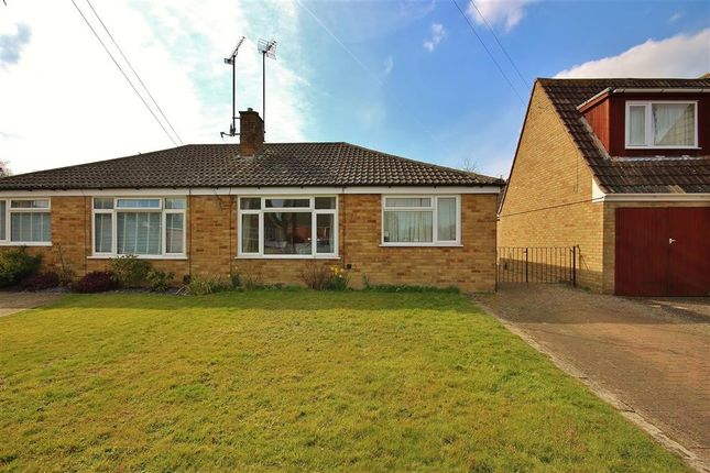 Thumbnail Semi-detached bungalow to rent in Palmers, Wantage