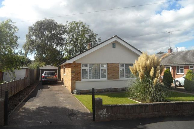 Thumbnail Bungalow to rent in Beacon Park Road, Upton, Poole