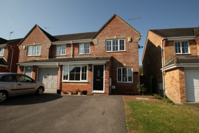 Thumbnail Semi-detached house to rent in Holm Oak Close, Verwood
