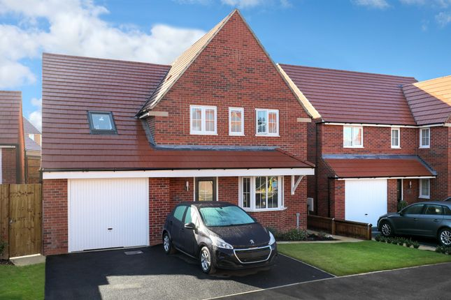 """Thumbnail Detached house for sale in """"Harrogate"""" at Stanley Close, Corby"""