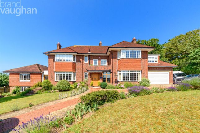 Thumbnail Detached house for sale in Ditchling Road, Brighton
