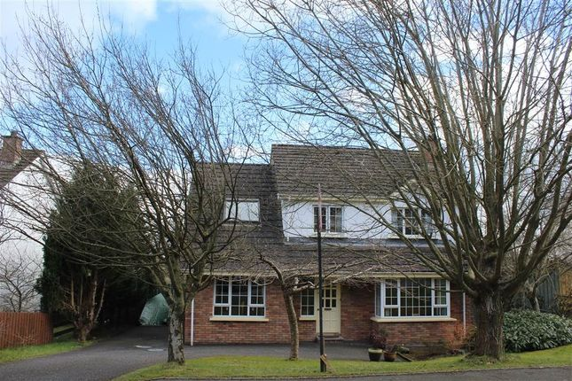 Thumbnail Detached house for sale in Ardfreelin, Newry