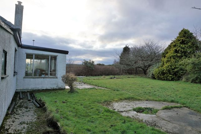 Side Garden of Evelix Road, Dornoch IV25