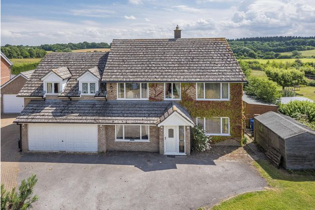 Thumbnail Detached house for sale in Stanstead, Sudbury, Suffolk