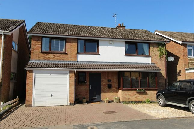 Thumbnail Detached house for sale in Laburnum Avenue, Lutterworth