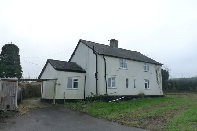 Thumbnail Detached house to rent in Birch Close, Charlton Marshall, Blandford Forum, Dorset