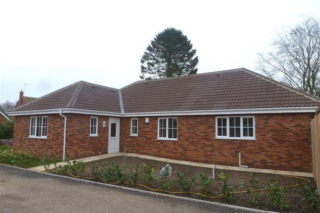 Thumbnail Bungalow to rent in Greenacre Close, Mattishall, Dereham
