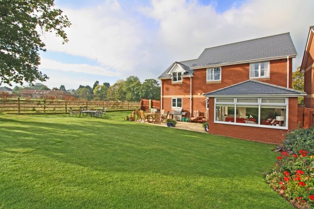 Thumbnail Detached house for sale in Sages Lea, Woodbury Salterton, Exeter