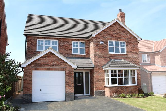 Thumbnail Detached house for sale in Plot 14, The Duchess, Sycamore Gardens, Cherry Lane, Wootton, North Lincolnshire